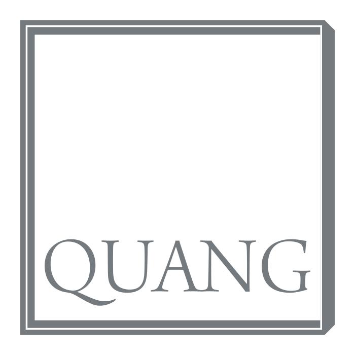 Quang – Pixelflüsterer professionelles Logo Design aus Wien.